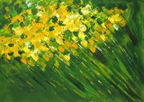 Gelb, Grün, Wiese, Blumen