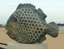 Fisch, Meerestiere, Strand, Oeffentliche werke