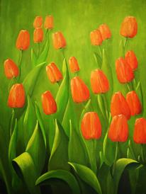 Landschaft, Blumen, Licht, Tulpen