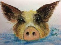 Schwein, Wasser, Glücksbringer, Tiere