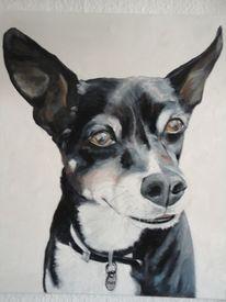 Hund, Pinsel, Tiermalerei, Tierportrait