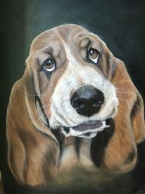Hush puppies, Vierbeiner, Acrylmalerei, Hund