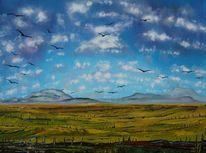 Naturlandschaft, Wolken, Himmel, Feld