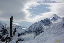 Licht, Winter, Landschaft, Schnee