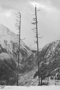 Licht, Schnee, Winter, Fotografie