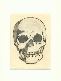 Bleistiftzeichnung, Schädel, Tusche, Anatomie
