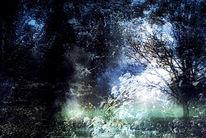 Äste, Glas, Wolken, Baum