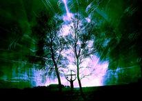 Wind, Leben, Kreuz, Birken