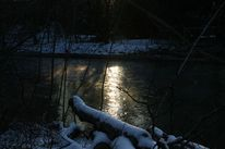 Pflanzen, Fluss, Licht, Sonne
