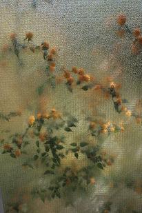 Glas, Blumen, Licht, Pflanzen