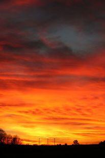 Baum, Sonnenuntergang, Kälte, Wolken