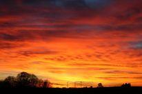 Baum, Sonnenuntergang, Kälte, Himmel
