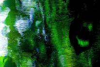 Glas grün planzen, Fotografie