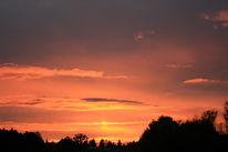 Wolken, Baum, Himmel, Sonnenuntergang