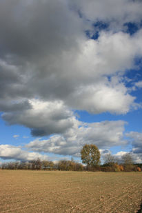 Acker, Baum, Wolken, Himmel