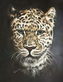 Leopard, Katze, Tiere, Pastellmalerei
