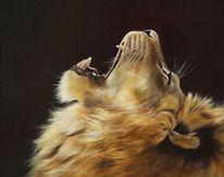Tierwelt, Ölmalerei, Großkatze, Löwe