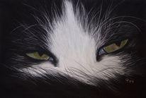 Katze, Malerei, Haustier, Schwarzweiß