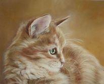 Pastellmalerei, Haustier, Fotorealismus, Katze