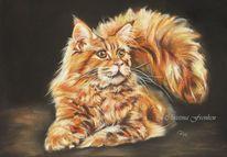 Natur, Tiere, Katze, Pastellmalerei