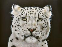Großkatze, Schneeleopard, Tierportrait, Acrylmalerei
