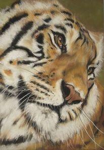 Malerei, Tierwelt, Katze, Pastellmalerei