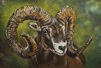 Tiere, Malerei, Widder, Pastellmalerei
