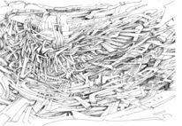 Schwingen, Zeichnung, Flügel, Surreal