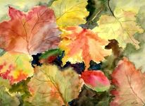 Bunt, Blätter, Herbstblätter, Herbst