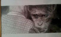 Bleistiftzeichnung, Cäsar, Affe, Malerei
