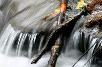 Landschaft, Natur, Wasser, Fotografie
