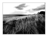 Fotografie, Wind