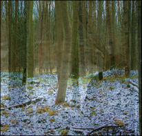 Fotografie, Surreal, Wald, Geist