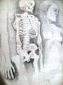 Akt, Anatomie, Körper, Skellett