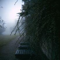 Lubitel, Nebel, Kodak, Analoge fotografie