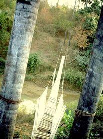 Fluss, Brücke, Palmstamm, Fotografie