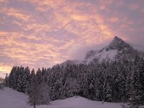 Berge, Morgenrot, Wald, Schnee