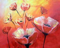 Orange, Mohnblumen, Blumen, Warm