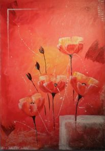 Orange, Rot, Blumen, Mohn