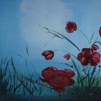 Himmel, Rot, Mohnblumen, Gras