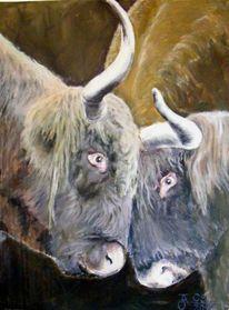 Bulle, Tiere, Ölmalerei, Acrylmalerei