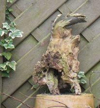 Holz, Vogel, Efeu entdeckung, Pinnwand