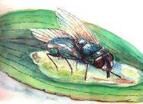 Fliege, Trinken, Blätter, Durst