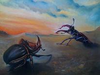 Nashornkäfer, Duell, Käfer, Insekten