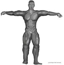 Gemusoft, Modell, Kriegerin, Anatomie