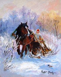 Pferde, Frau, Winter, Schlitten
