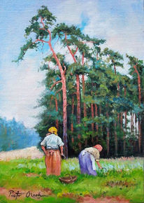 Wiese, Frau, Kraut, Wald