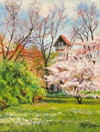 Magdeburger, Blumen, Frühling, Malerei