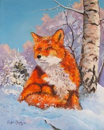 Winter, Schnee, Fuchs, Wald