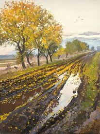 Herbst, Weg, Blätter, Regen